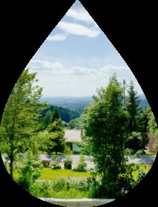 Waldhäuser Ausblick